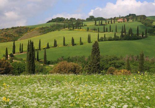 10846782, Italy, Tuscany, Toscana, hills, hill, sc